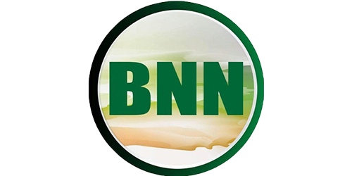 BNN Group of Companies,INETS Company Limited, Software Development in Dar es Salaam, Tanzania