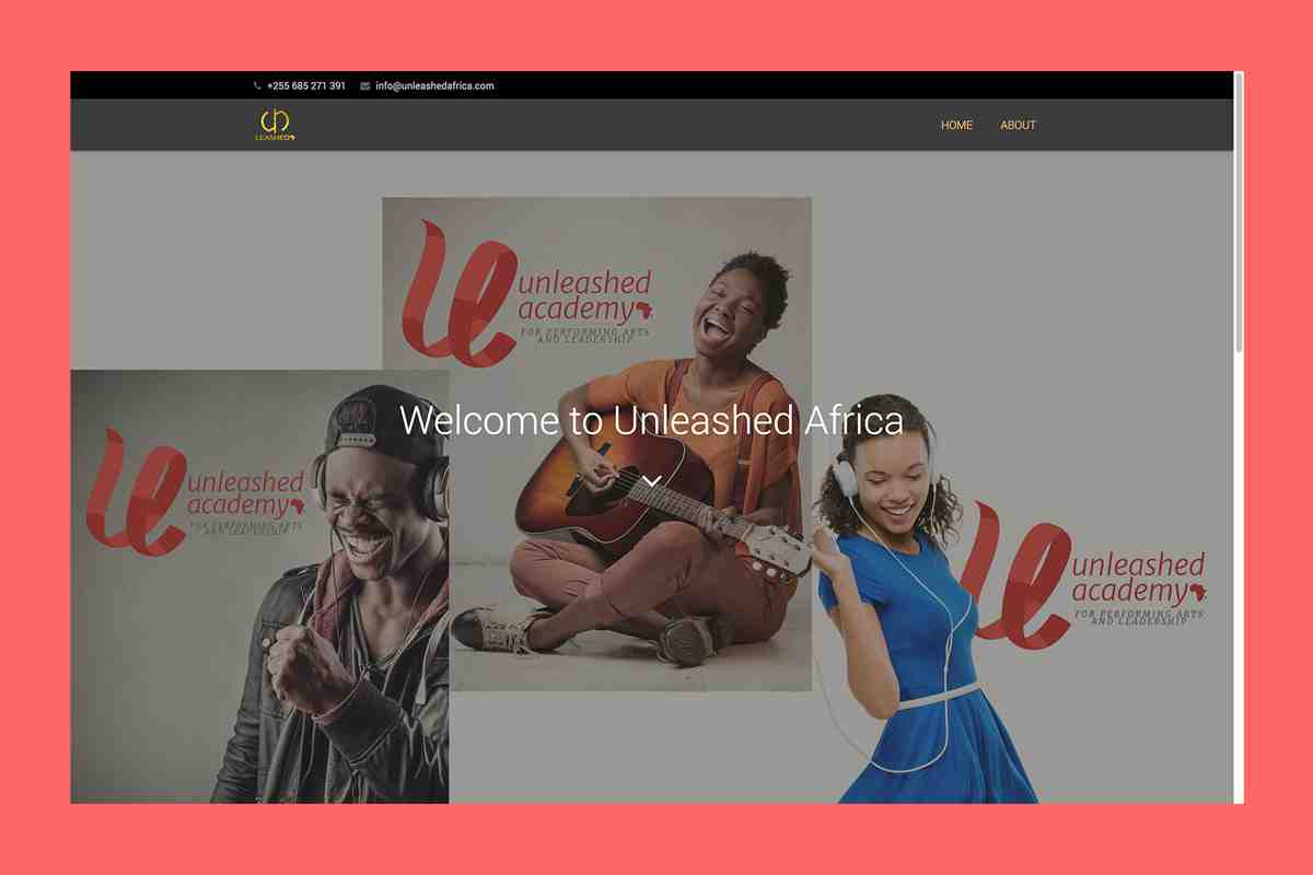 UNLEASHED AFRICA Website,INETS Company Limited, Software Development in Dar es Salaam, Tanzania
